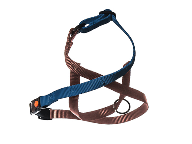 Dog Harnesses - Basic Link