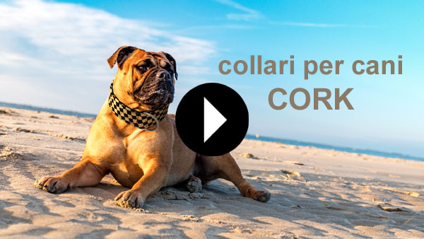 collari per cani cork video