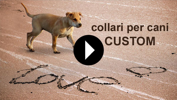 collari per cani custom video