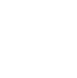 icona shop online switchdog
