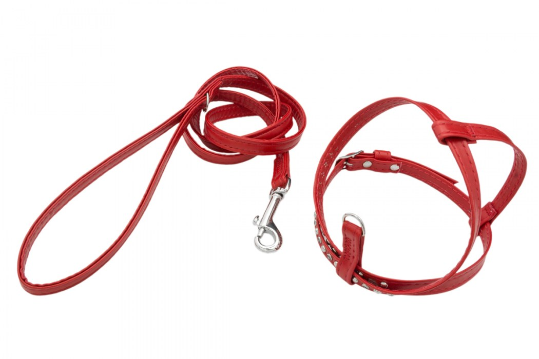 Pettorine cani chihuahua puppy toy Rosso